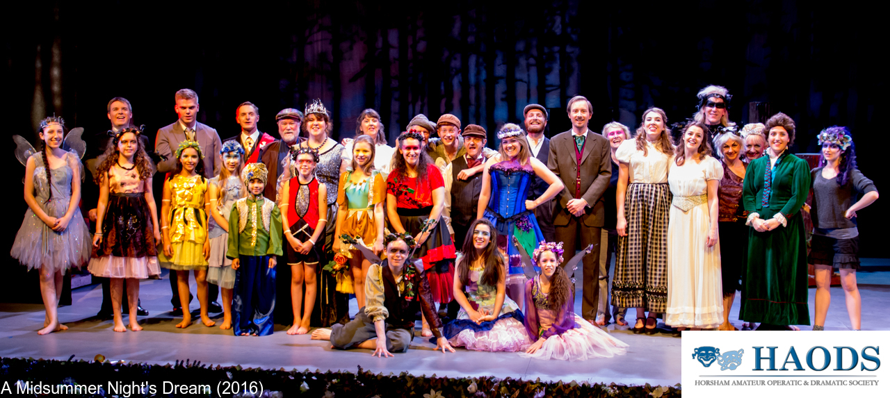 The HAODS cast of A Midsummer Night's Dream